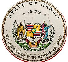 Vintage State Of Hawaii Badge by mrdoomits