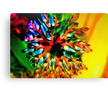 Bromeliad color wheel Canvas Print