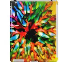Bromeliad color wheel iPad Case/Skin
