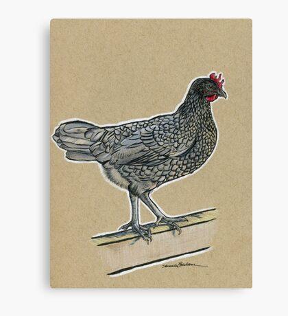State Bird Series:  Delaware - Delaware Blue Hen Canvas Print
