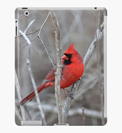 A bright spot in the winter woods iPad Case/Skin