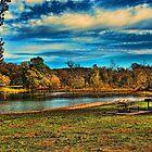 Wonderful Autumn Day by Rick  Friedle