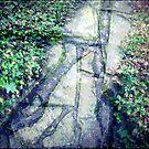 A Day At The Arboretum #4 - Triptychon by Benedikt Amrhein