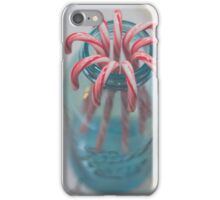 A Jar of Holiday Cheer iPhone Case/Skin