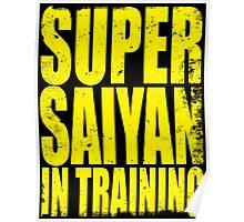 Super Saiyan in Training Poster