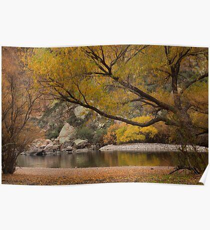 Autumn along the Salt River Poster