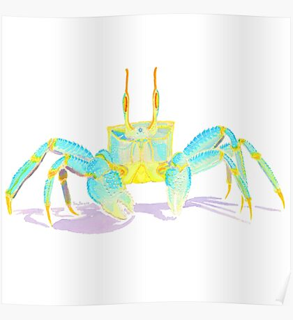 Turquoise Crab Poster