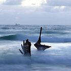 Pointing The Way by Wayne  Nixon  (W E NIXON PHOTOGRAPHY)