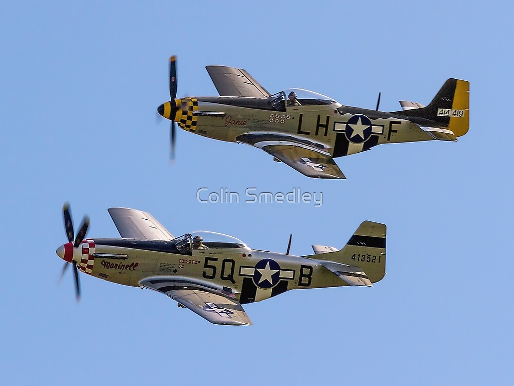 """Maurice Hammond's P-51D Mustangs """"Marinell"""" & """"Janie"""" by Colin Smedley"""