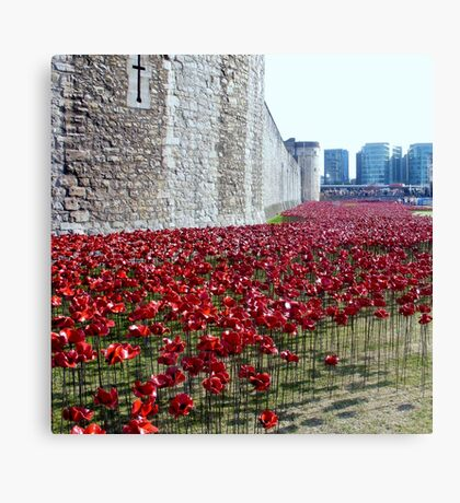Sea of poppies -Tower of London Canvas Print