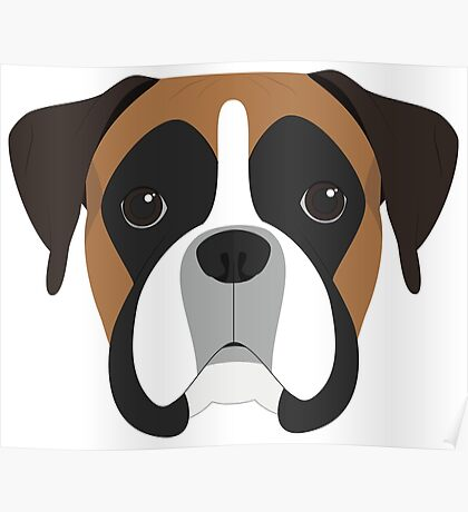 Boxer Dog Portrait Illustration Poster