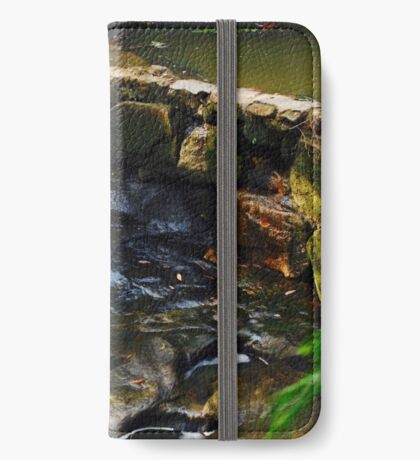 Candid Falls iPhone Wallet/Case/Skin