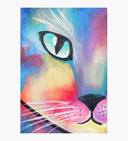 Colorful Abstract Cat  Photographic Print