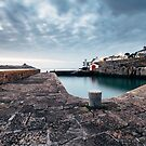 Coliemore Harbour, Dalkey, Ireland by Alessio Michelini