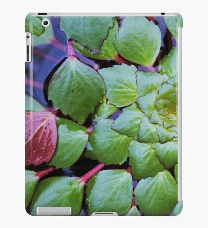 Patterns of a pond iPad Case/Skin