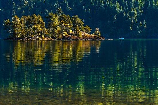 SERENE REFLECTIONS by Sandy Stewart