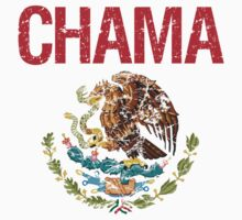 Chama Surname Mexican Kids Clothes