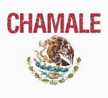 Chamale Surname Mexican Kids Clothes