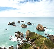 Nugget Point by Elizabeth Tunstall