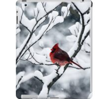 Cardinal In Snow Covered Tree iPad Case/Skin