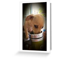 Please don't tell Mommy♡ Greeting Card