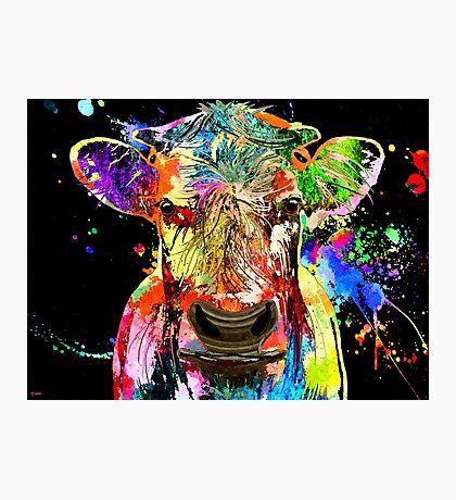 Cow Grunge  Photographic Print