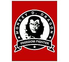 Monkey D. Dragon X Che Photographic Print