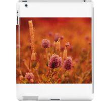 Northern Territory Wildflowers iPad Case/Skin