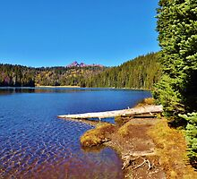 SCENIC & TRANQUIL DEEP BLUE OREGON LAKE by CHERIE COKELEY
