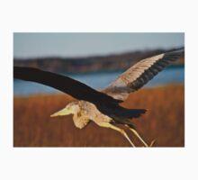 Great Blue Heron in Flight Baby Tee