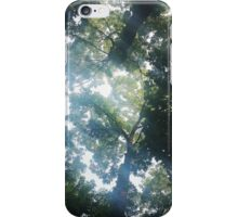Tree View iPhone Case/Skin