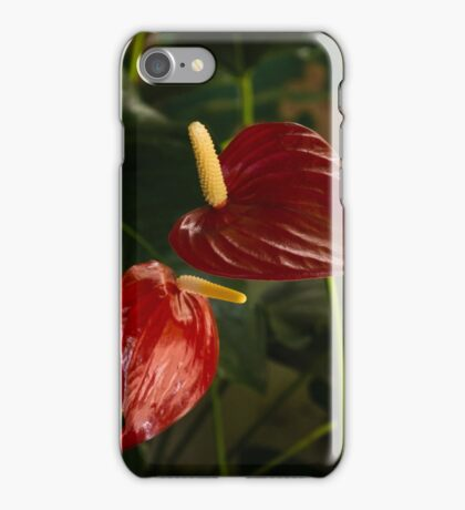 Exotic Tropical Dream Garden - Sun Shade and Heart Shaped Anthurium Flowers iPhone Case/Skin