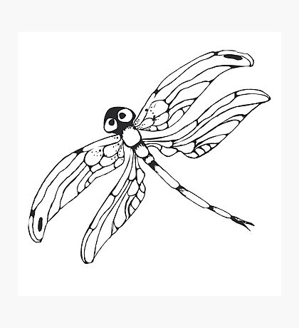 Dragonflie. Hand drawn graphic illustration in black and white Photographic Print