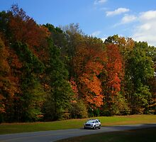 New GMC Arcadia SUV Driving through the fall foliage  on the Natchez Trace Nashville by Daniel  Oyvetsky