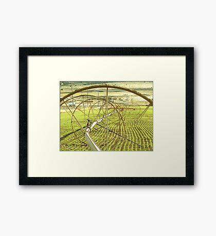 Sprinklers - Complex  Framed Print
