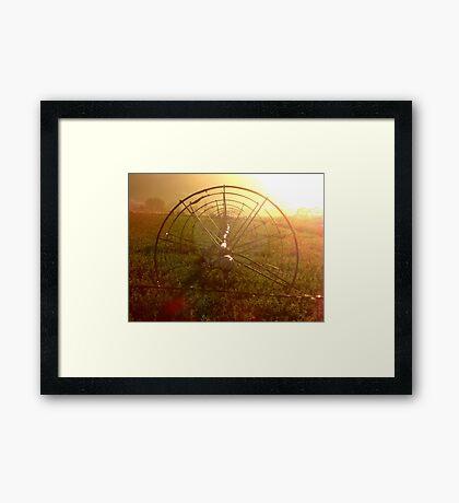Sprinklers - Sunrise Framed Print