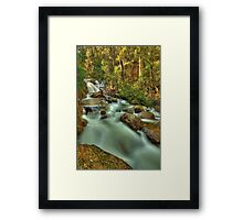 Nigothoruk Creek, Alpine National Park Framed Print