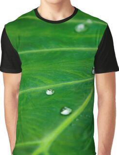 Leafy Green Water Droplets Graphic T-Shirt