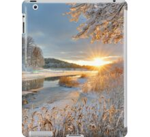 Winter landscape over Storan river iPad Case/Skin
