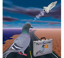 """☞ º°""""˜`""""°☜♥☞ PIGEON IMPOSSIBLE >PILLOWS,PICTURE,TOTE BAG ☞ º°""""˜`""""°☜♥☞ Photographic Print"""