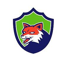 Red Fox Head Growling Shield Retro by patrimonio