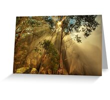 Clearing mist, Mount Buffalo Greeting Card