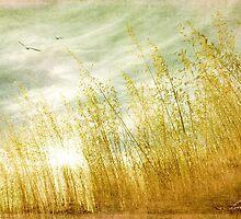 True love transcends time by Linda Lees