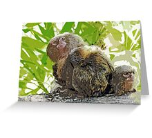 Monkeys (very small !) 1 p (c)(t)  painting ! Olao-Olavia / Okaio Créations Greeting Card