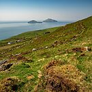 Ring of Kerry by mlphoto