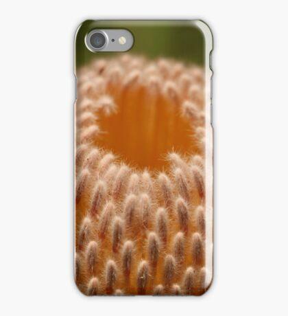 Banksia iPhone Case/Skin