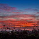 Fiery Sky by mlphoto