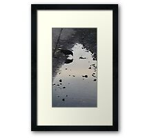 Crow Reflections Framed Print