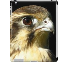 Brown Falcon (Falco berigora) iPad Case/Skin