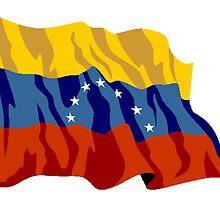 Venezuela Flag by kwg2200